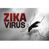 Virus Zika y contagio por vía sexual
